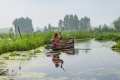 On the Dal Lake Water Kashmir India
