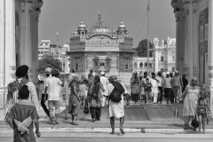 Golden Tenple Amristar Punjab India