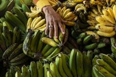Banana Seller's Hand Bali Indonesia