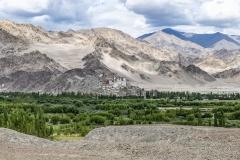 Thiksey Monastry Landscape Ladakh India