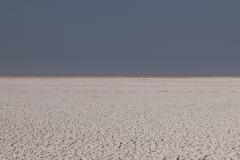 Pan Landscape Etosha National Park Kunene Region Namibia