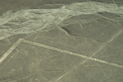 The Whale Nazca Lines Geoglyphs Aerial Perù