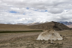 Changthang Plateau near Tso Moriri Lake Ladakh India