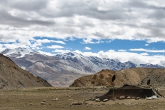 Changthang Plateau View near Tso Moriri Lake Ladakh India