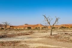 Namib Naukluft National Park Landscape Namibia