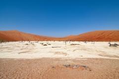 Dead Valley Sossusvlei Landscape