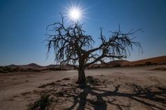 Sunset Sossusvlei Namib Naukluft National Park View Namibia