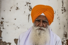 Sikh Portrait Golden Temple Amristar Punjab India