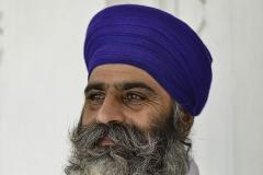 Sikh Man Portrait Golden Temple Amristar Punjab India