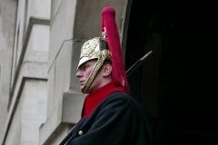Horse Royal Guard Whitehall London England