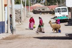Arequipa Street Walking Perù