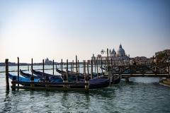 Basilica of the Salute Skyline Venice Italy